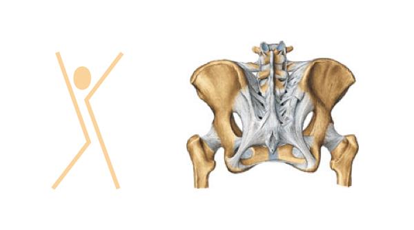 Behandeling Bekkeninstabiliteit bij de fysio